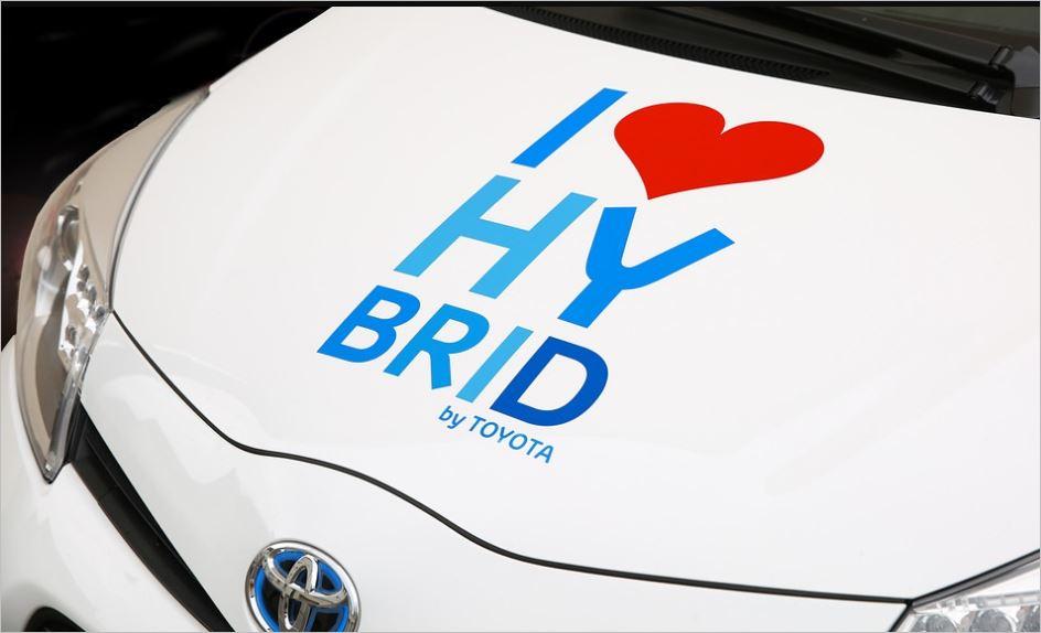 hybrid-30